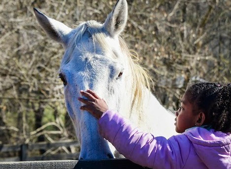 Why Children and Horses Heal Together