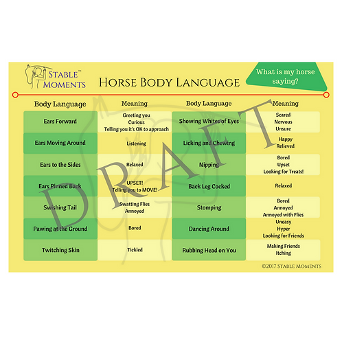 Horse Body Language Poster