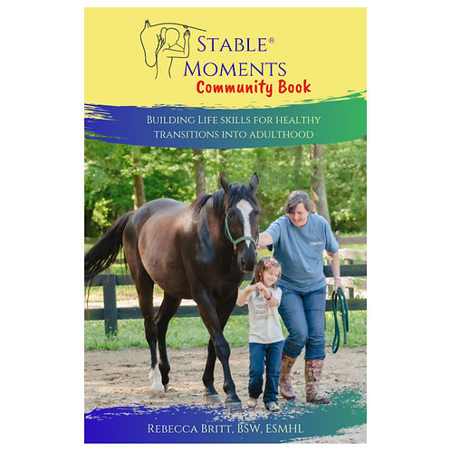Stable Moments Community Book