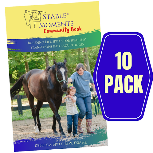Stable Moments Community Book (10 Pack)