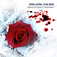 Stay Until The End
