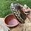 Thumbnail: Lidded Tree Frog Bronze Pot