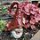 Thumbnail: Gnome: Cabernet Clay
