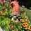 Thumbnail: Gnome- Peach Treat