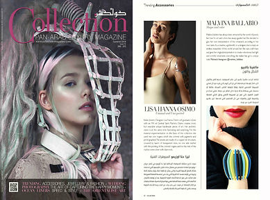 Collection magazine