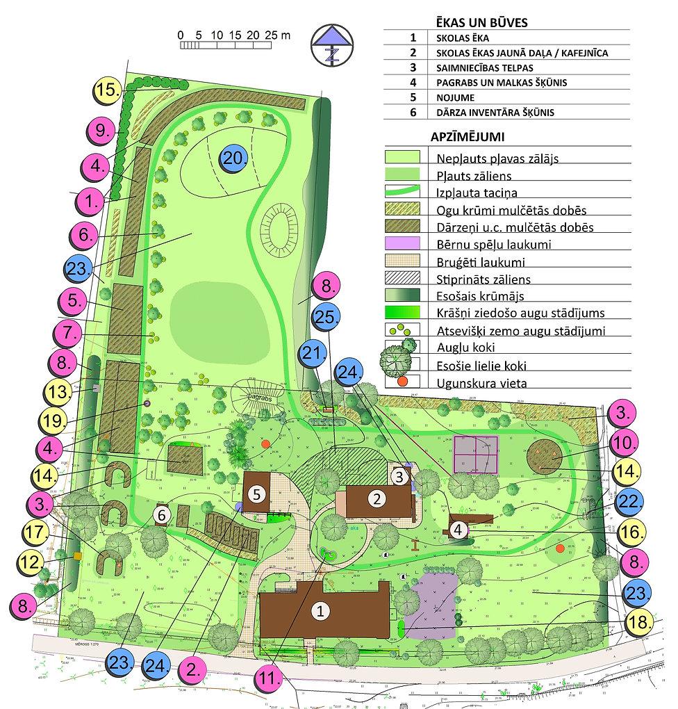 Ikšķiles skolas dārza plāns