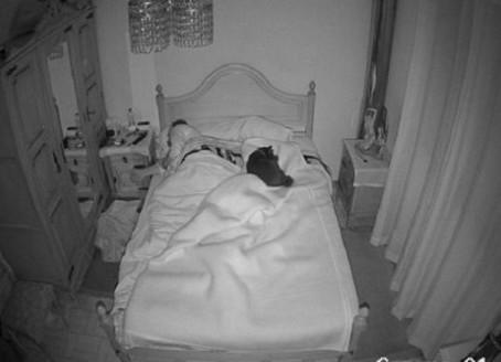 Его жену и собаку снимала скрытая камера, пока он был на работе