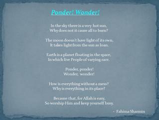 Ponder! Wonder!