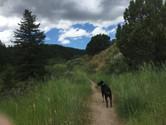 near Big Springs, Idaho