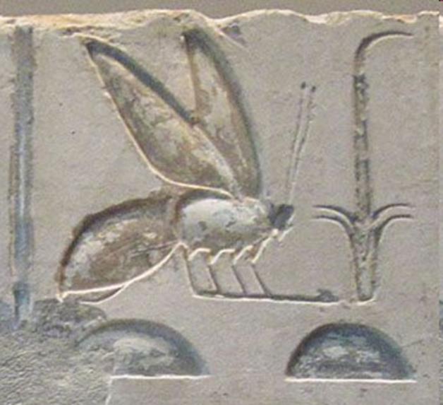 Egypte_Nesout_Bity