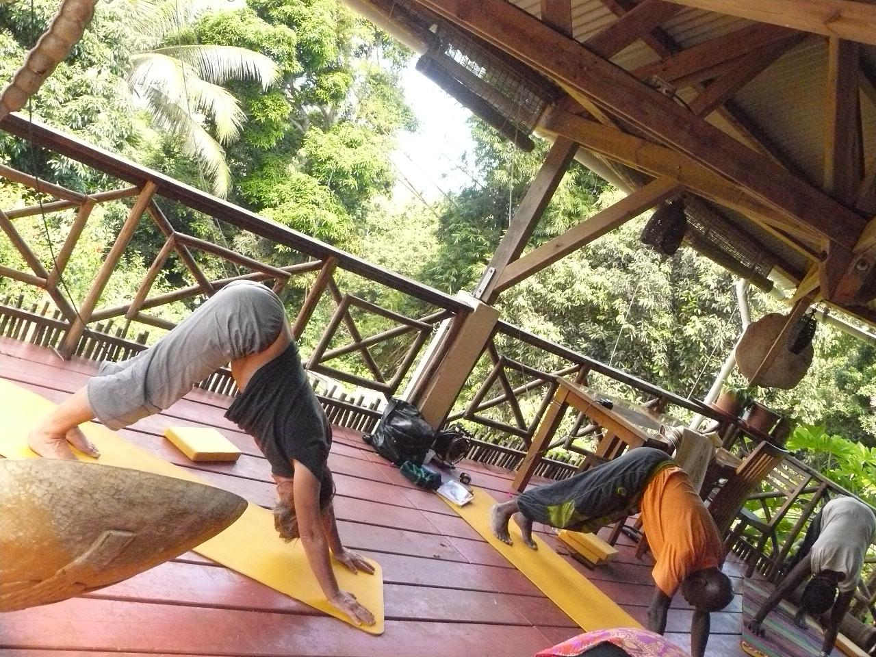 Mayotte_Combani_Relais Forestier_16