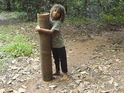 Mayotte_Combani_Bamboo_Géants_Tijah_36