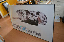 Urban Paws inside sign