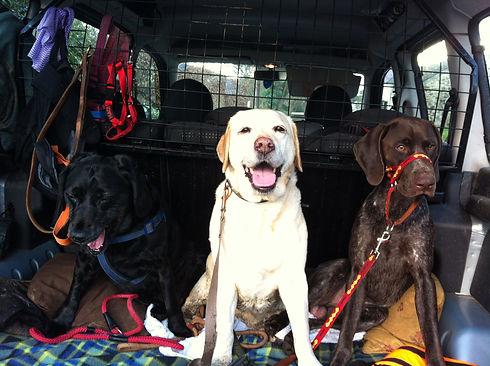 3 Travellers.JPG