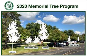 ZAA 2020 tree program.png