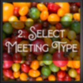 Select Meeting Type