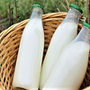 milk bottle- M1.png