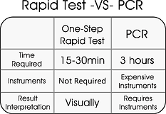 RT vs PCR.png