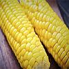 corn- afa total_2.jpg