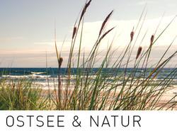 Ostsee und Natur.jpg
