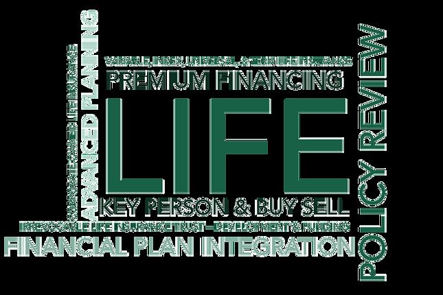 Life-Category-Wordle--Strategic-Risk-Man