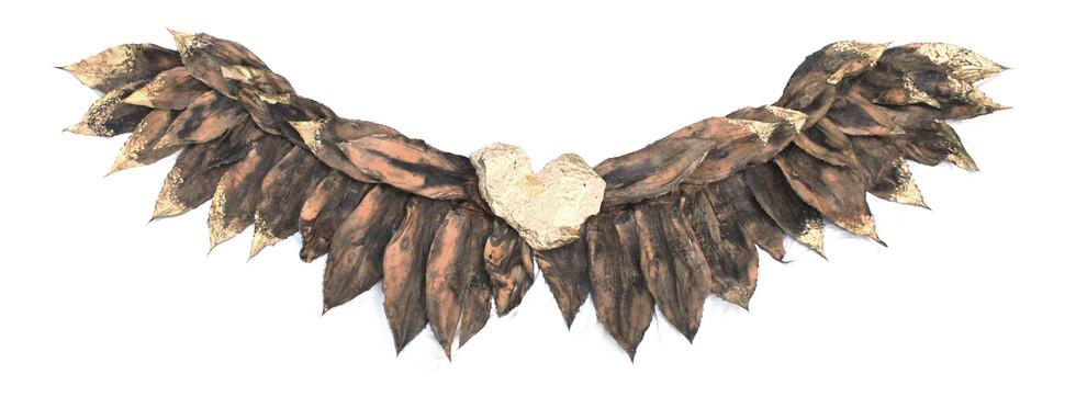 sacred_heart_wings_lighter.jpg