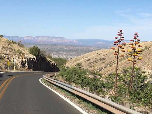 16_drive_from_jerome_stuio_agaves_in_ful