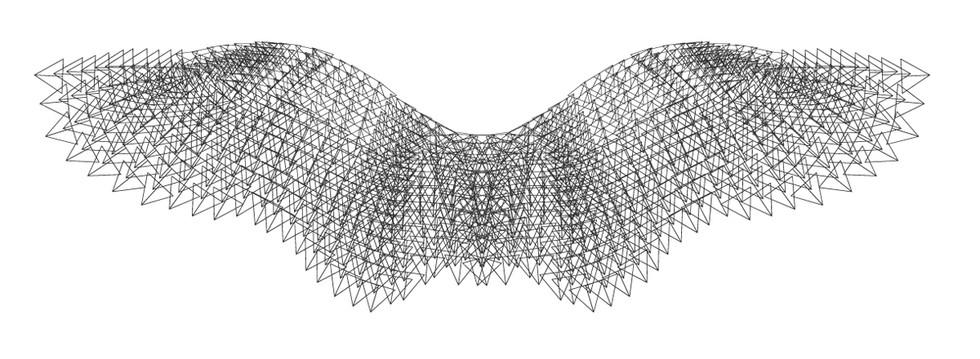 tetrahedron_wings_carriemaerose.jpg