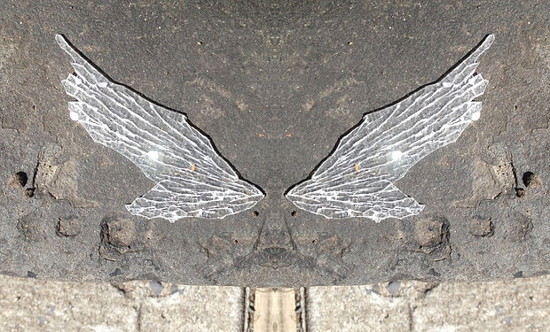 sidewalk_plasticwing_full.jpg