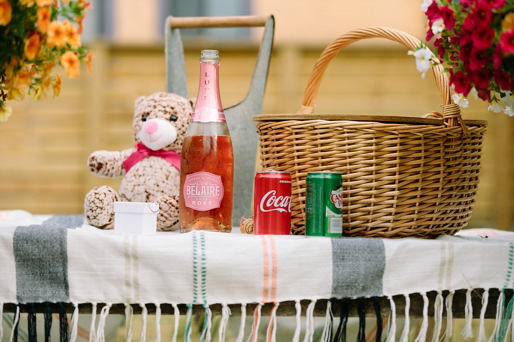 Surprise proposal picnic setup in Pittsburgh, PA by LeeAnn Stromyer