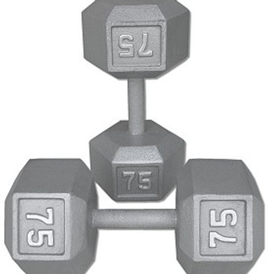 75 lb Dumbbell Pair