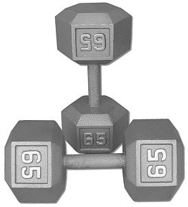 65 lb Dumbbell Pair