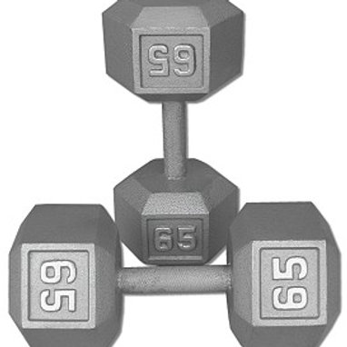 65 lb Dumbbell Pair