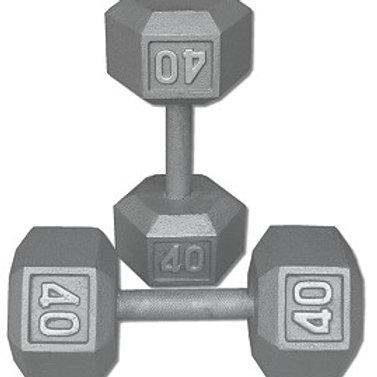 40 lb Dumbbell Pair