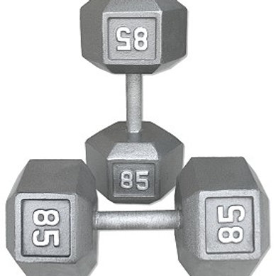 85 lb Dumbbell Pair