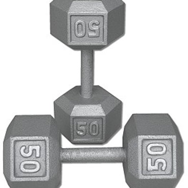 50 lb Dumbbell Pair