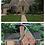 Thumbnail: Personalized Home Replica Ornament