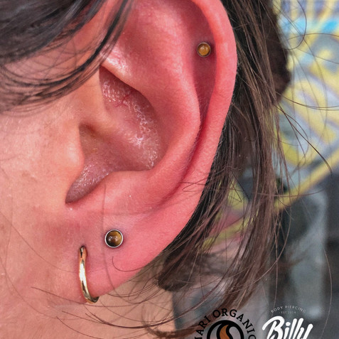 Upper lobe y helix piercings