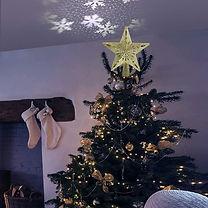 estrella con proyector.jpg
