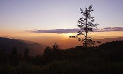 fall photo sunset