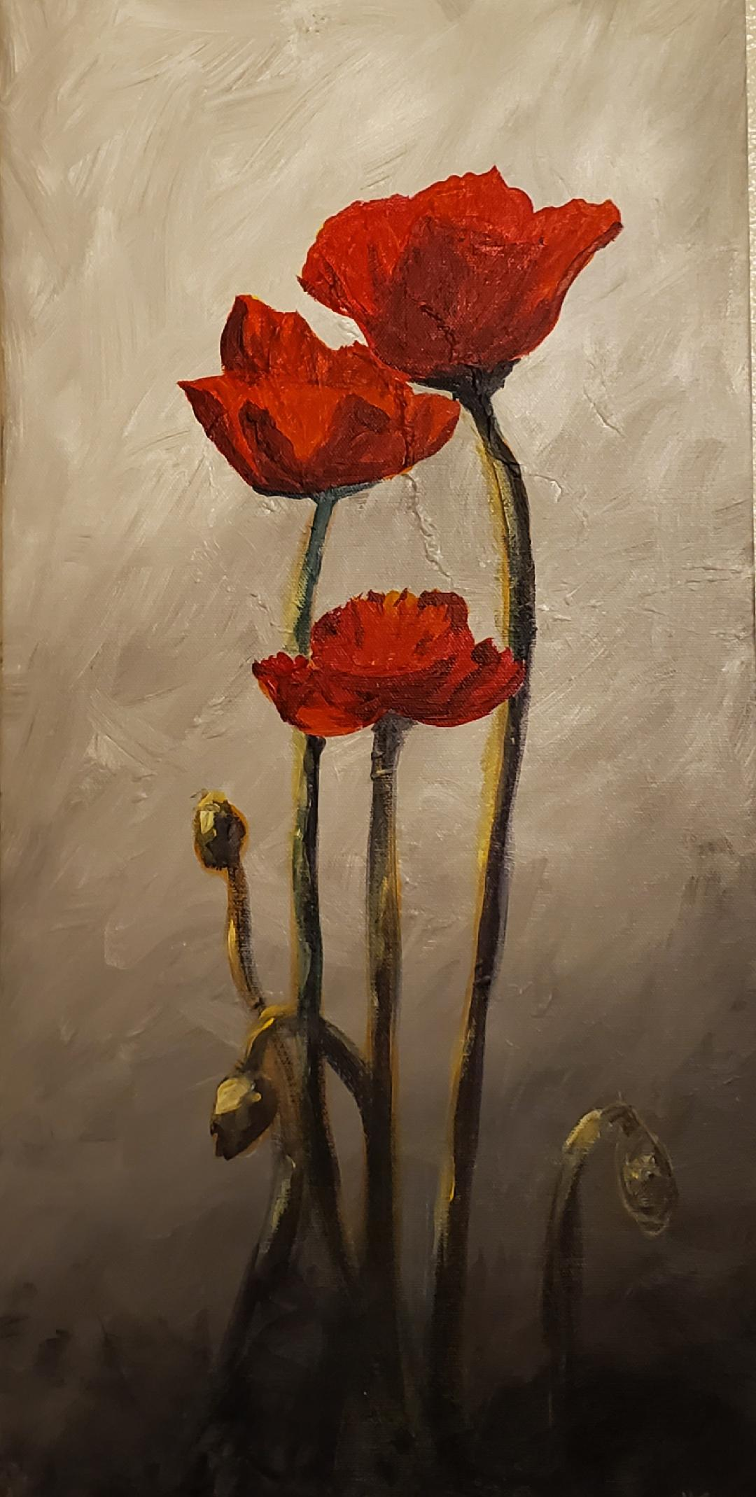 Red Poppies -Toliver