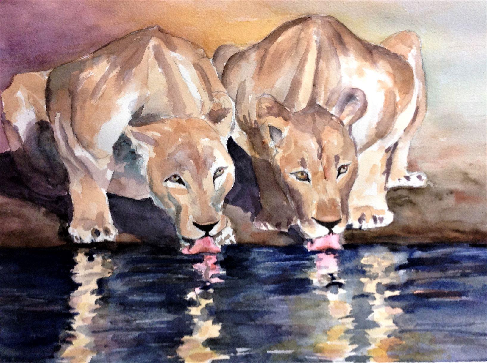 Lionesses - Scriba