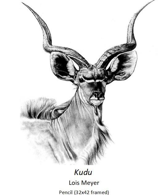Kudu - Lois Meyer