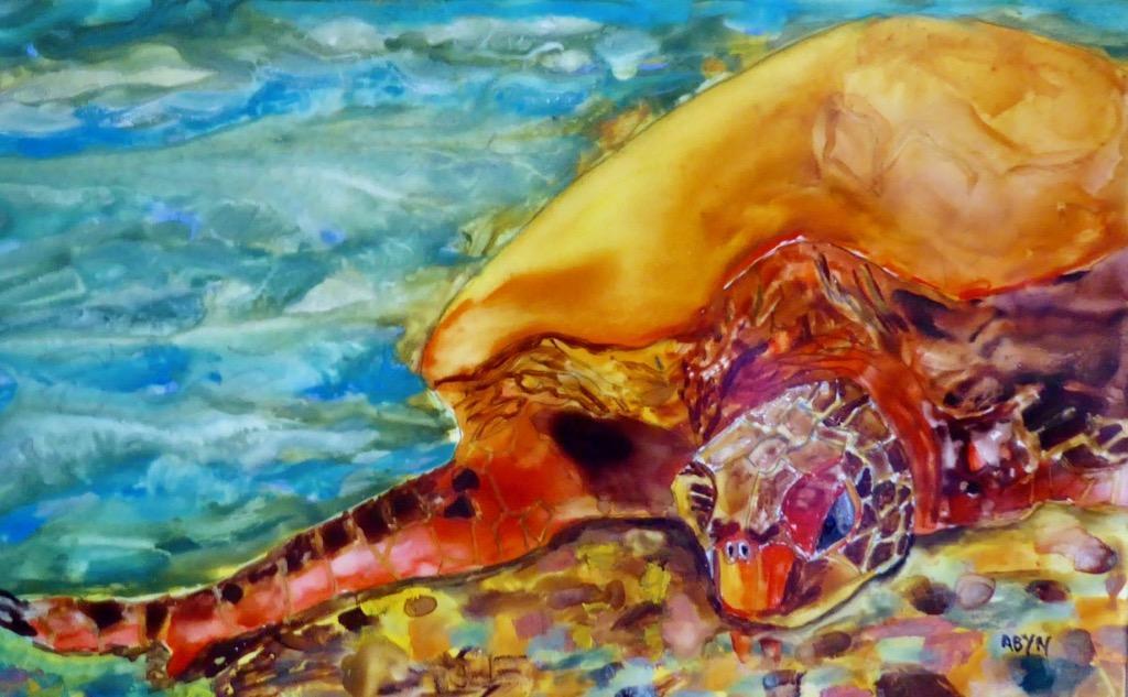 Sea Turtle - Sisk