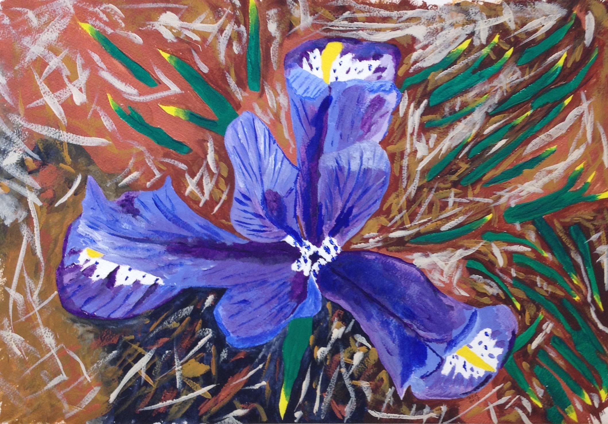 Dramatic Flower - Luttschwager