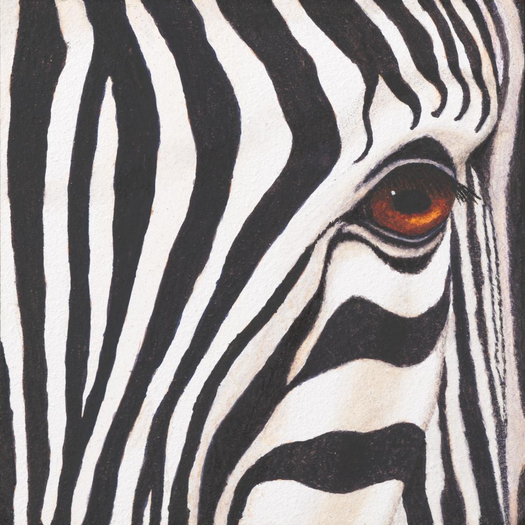 Study in Stripes - Atkinson