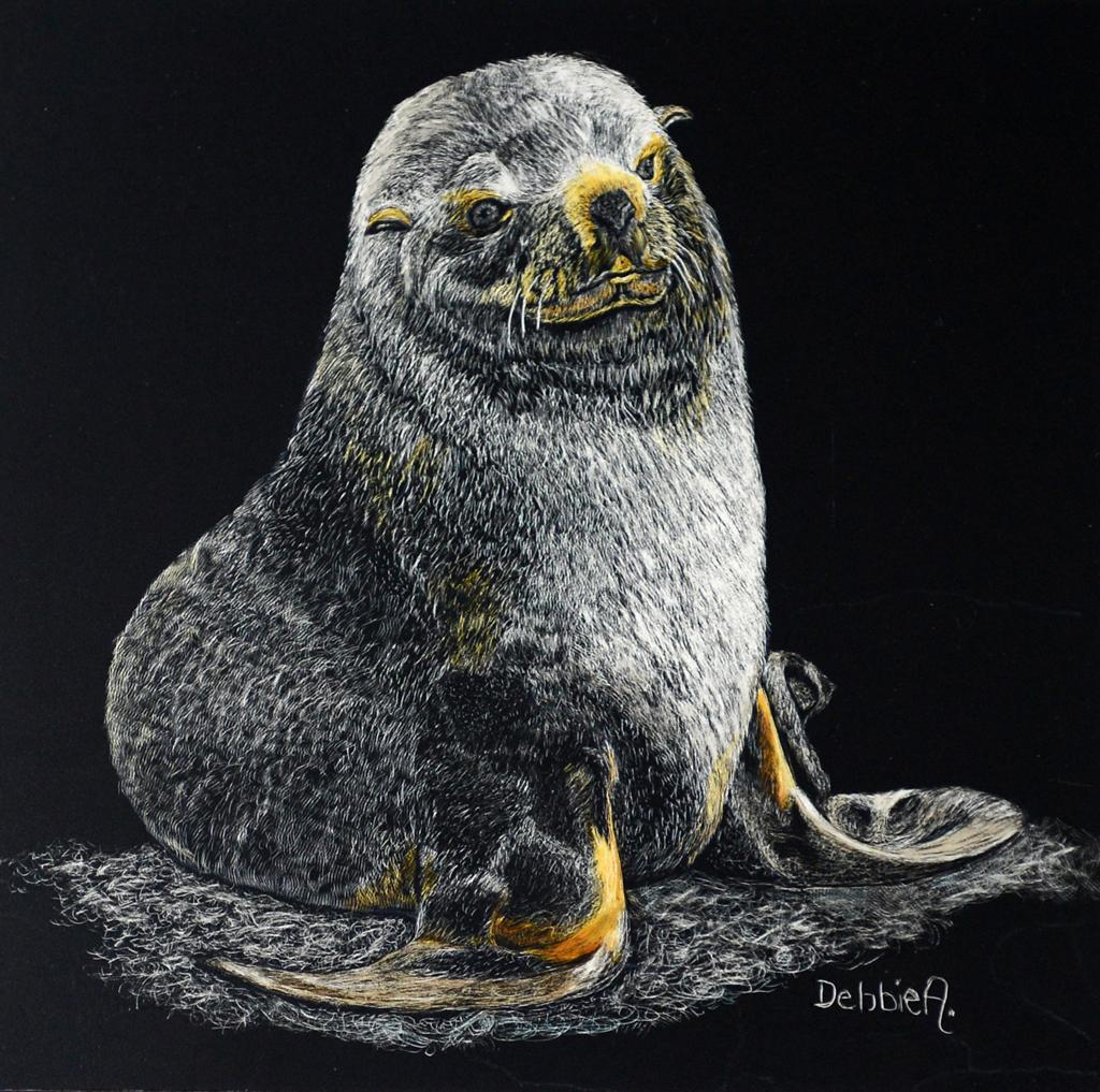 Antarctic Fur Seal Pup - Atkinson