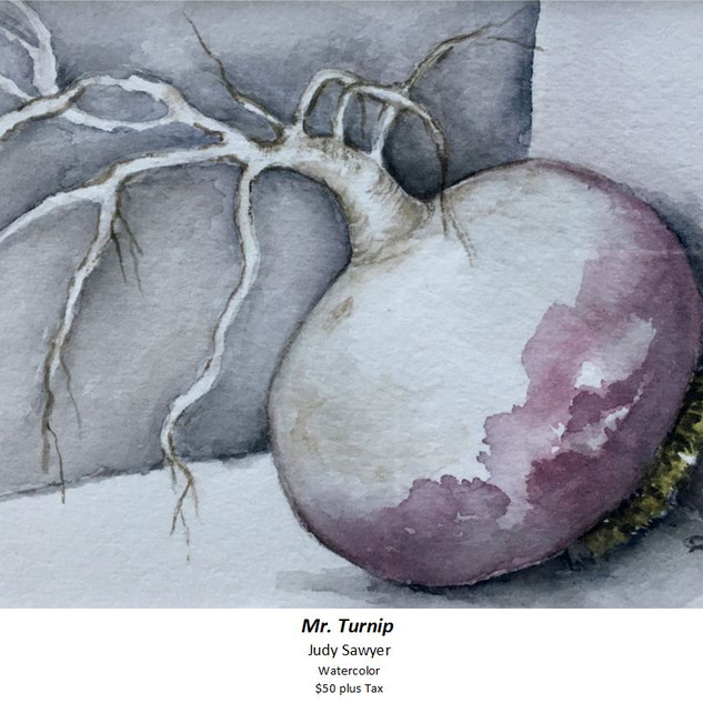 Mr Turnip - Judy Sawyer