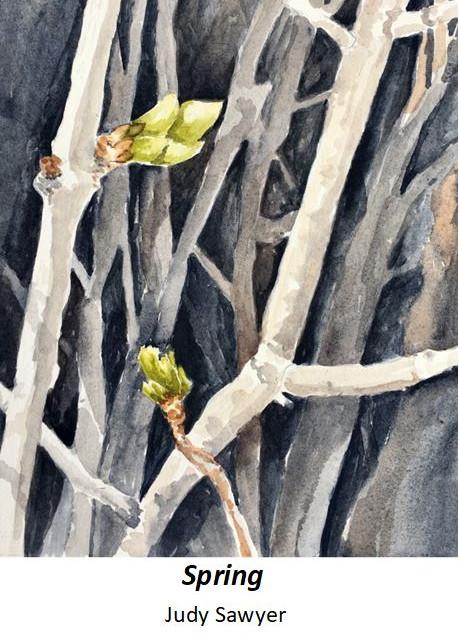 Spring - Judy Sawyer - Wartercolor - $75