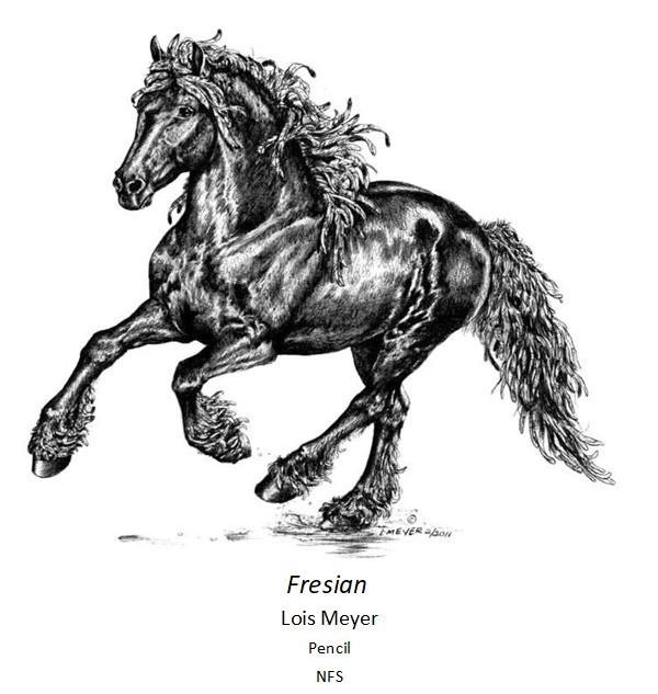 Fresian - Lois Meyer